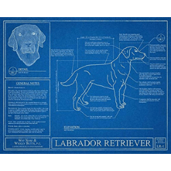 Valentine's day gift ideas for him Dog Blueprint